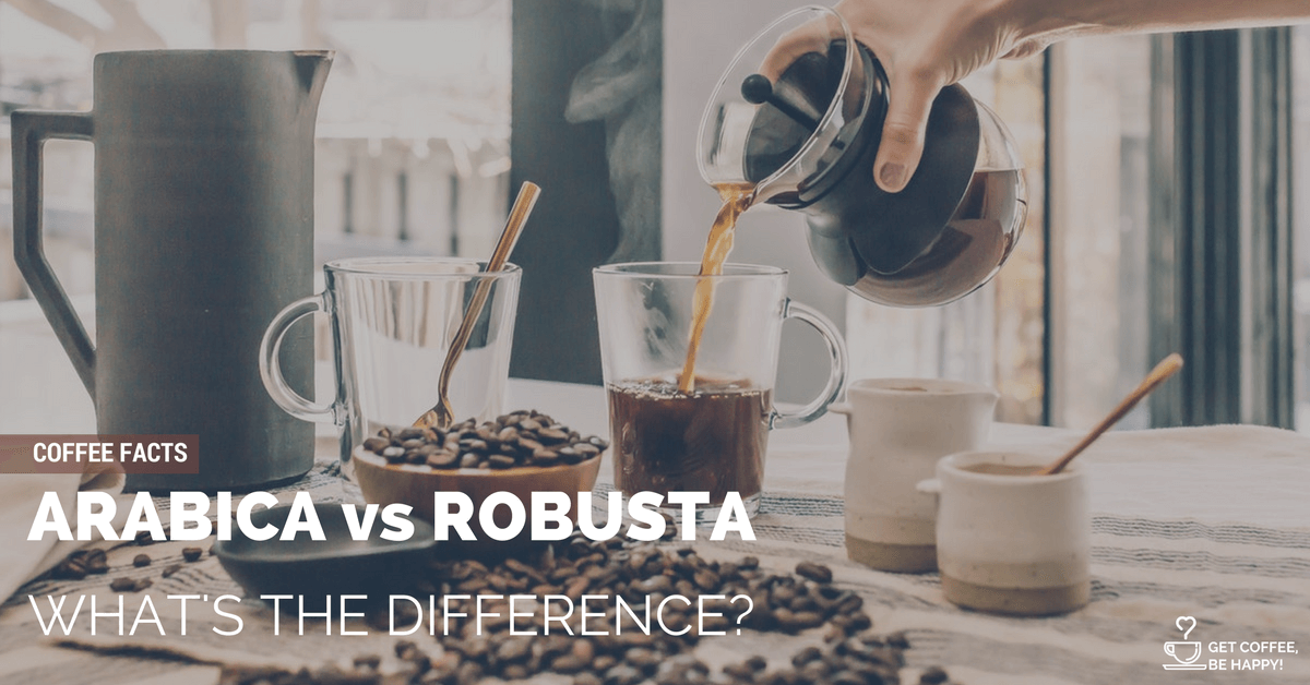 Arabica vs Robusta Coffee Beans: What's the Difference?